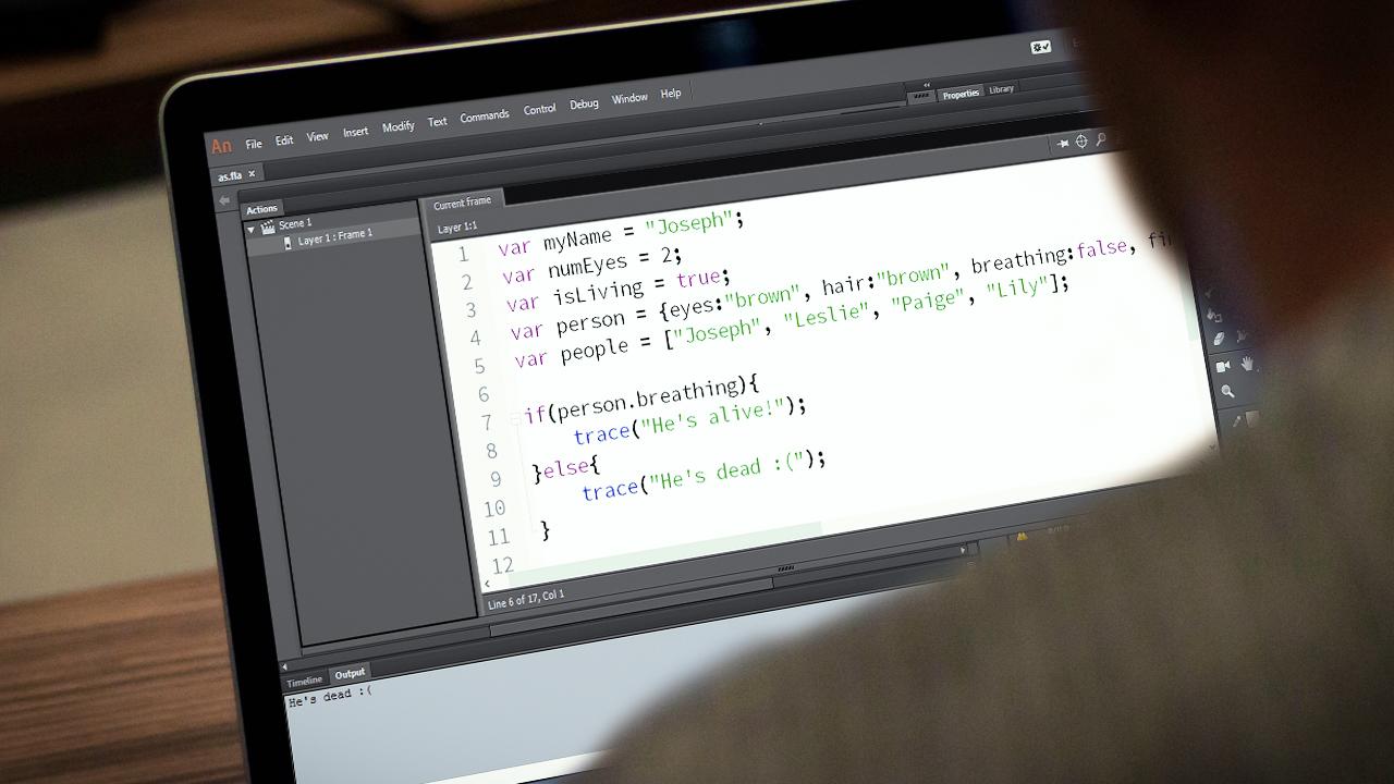 Animate CC Programming