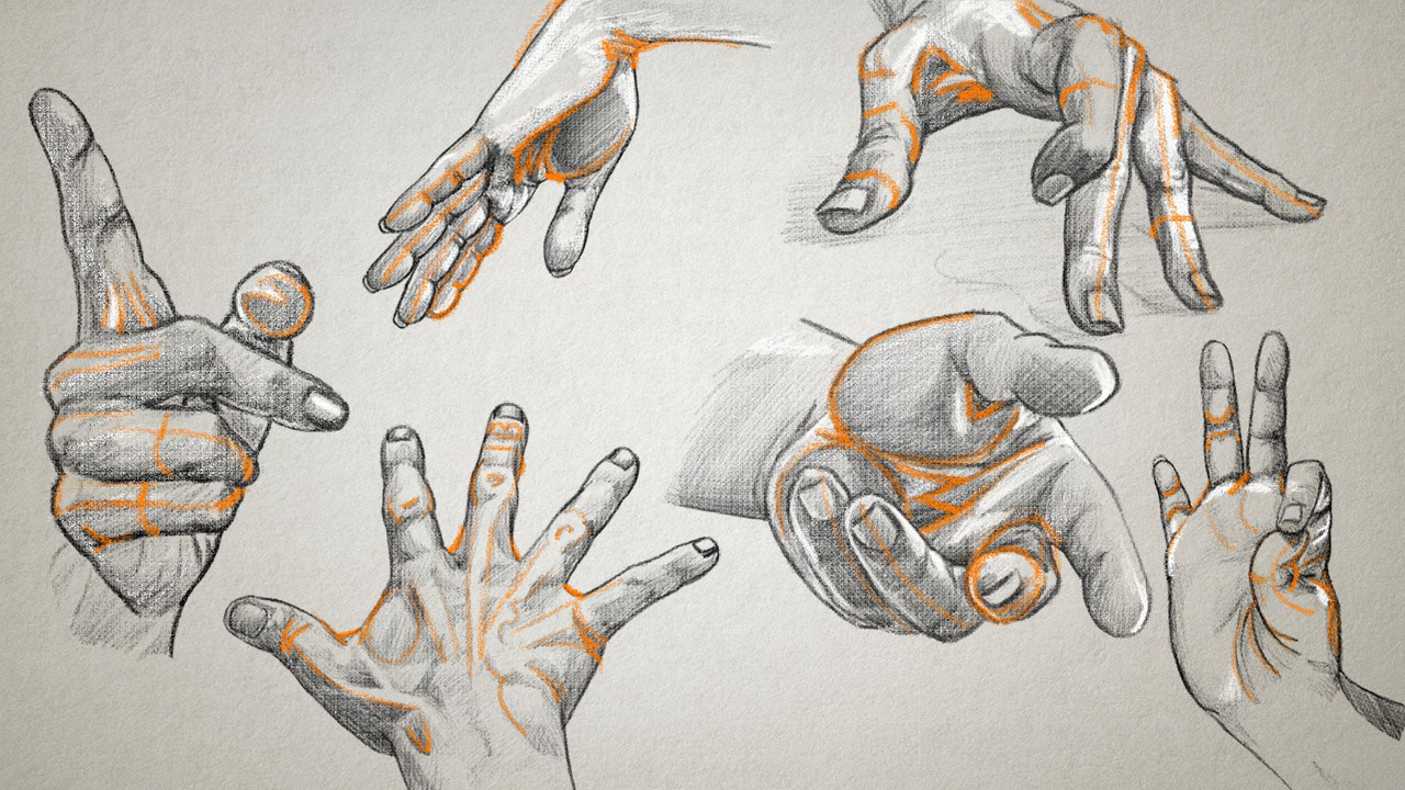Drawing The Arms And Hands Pluralsight