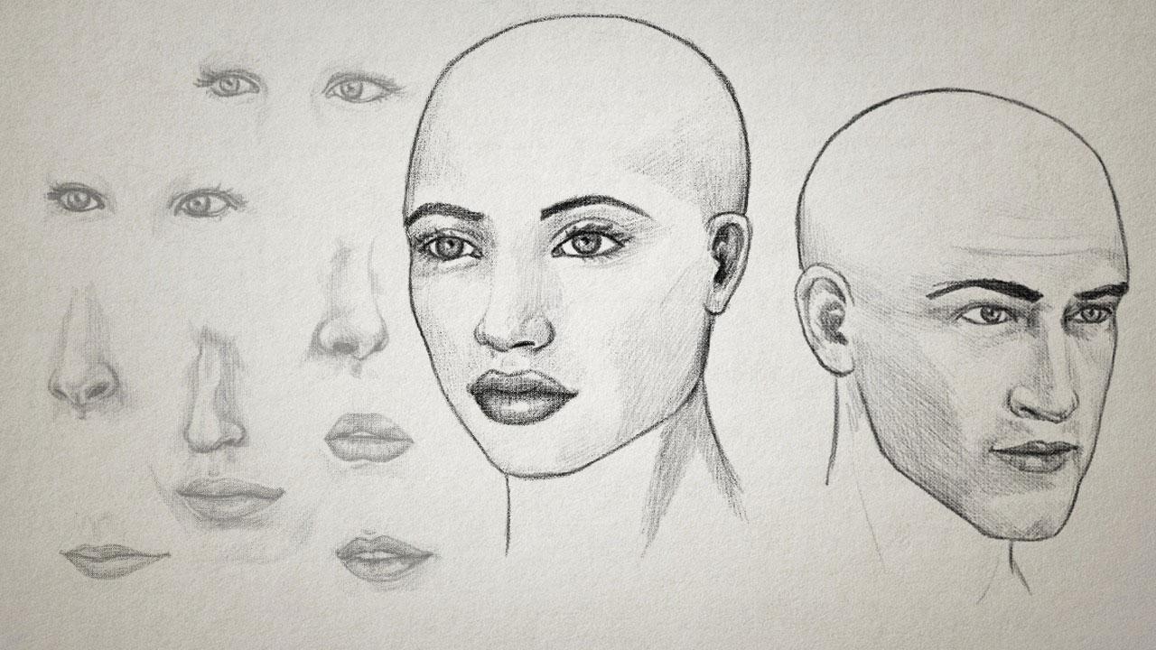 Facial structure rebuilding
